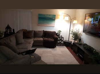 Room for rent in Palm Harbor
