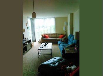 EasyRoommate US - Room for rent in Beautiful Apartment in St. Petersburg, Saint Petersburg - $750 /mo