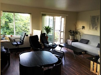 EasyRoommate US - Capitol Hill roommate wanted, Seattle - $1,300 /mo