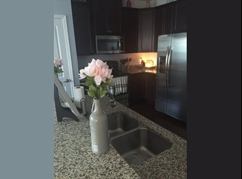 EasyRoommate US - Third Female Roommate Wanted About a Mile From Panthers Stadium, Charlotte - $600 /mo