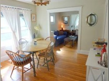 EasyRoommate US - Sunny 1 Bedroom - Somerville - Davis Square, Somerville - $950 /mo