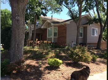 EasyRoommate US - Private Bed & Bath on separate level, Loveland - $700 /mo