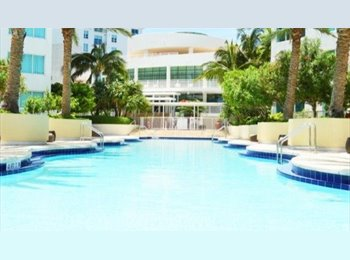 SHARED ROOM in Downtown Miami - Amazing view and great...