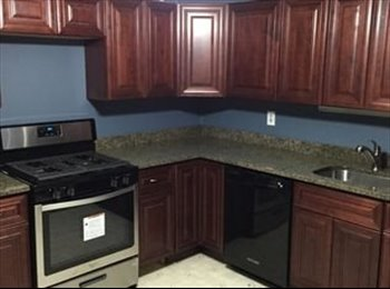 EasyRoommate US - Room available in South Side Slopes home / PET FRIENDLY!!, Pittsburgh - $600 /mo
