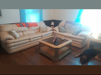 EasyRoommate US - 2 bedroom house with spare room to rent, Greenville - $300 /mo