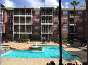 EasyRoommate US - Luxury private room and private bathroom, Houston - $900 /mo