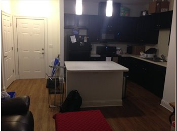 EasyRoommate US - Baton Rouge roommate wanted (Elysian Apartments), Baton Rouge - $498 /mo