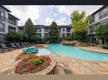 EasyRoommate US - Beautiful Apartment in Midtown, Houston - $1,000 /mo