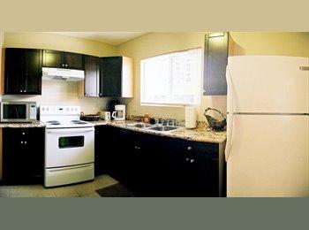 EasyRoommate US - affordable rentals in waikiki, Honolulu - $1,350 /mo