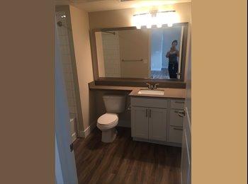 Apartment room in Denver for rent