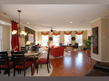 EasyRoommate US - Large room, own bath, own floor in upscale condo!, Virginia Beach - $900 /mo