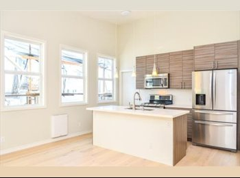 Newly remodeled and centrally located apt in SF/UCSF