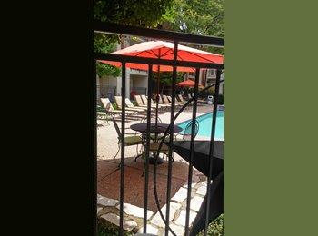Nice poolside apartment roomate needed