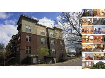 EasyRoommate US -  $700  - Beautiful 1 Bedroom available in 2 Bedroom Condo! , Minneapolis - $700 /mo