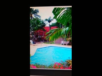 EasyRoommate US - COUNTRY COTTAGE OCEAN & MOUNTAIN VIEW/ PET ALLOWED, Waianae - $975 /mo