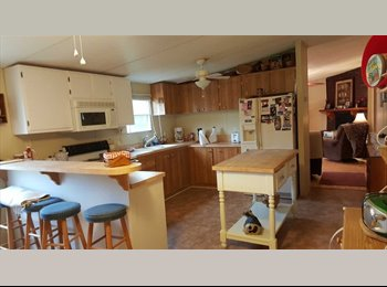 EasyRoommate US - Room for rent, great location, many perks, Lexington County - $400 /mo