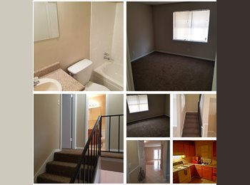 Male Looking for Roommate
