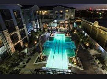 EasyRoommate US - Lexury urban Community with a Spacious room, San Antonio - $800 /mo