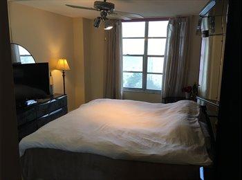 Wonderfull apartment in Hollywood beach