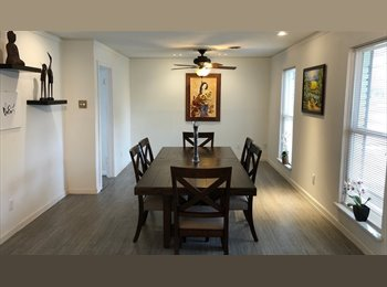 EasyRoommate US - Room for rent at Meyerland plaza, Willow Meadows/Willowbend Area - $750 /mo