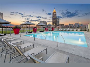 Pet friendly room 843$ rooftop pool