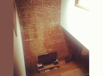 Beautiful, HUGE, Loft. Near Park -- Room available. (Fort...