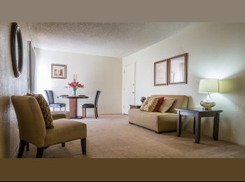 EasyRoommate US - Roomate Wanted, Tucson - $439 /mo