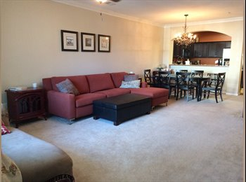 EasyRoommate US - Private Bedroom & Bath in Cute Condo Near East Beach! , Norfolk - $600 /mo