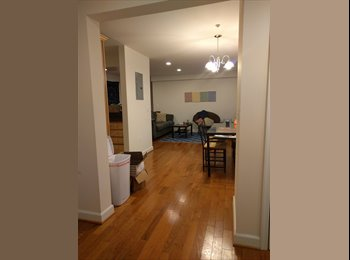 Room for Rent - Columbia Heights - Beautiful Apt w...