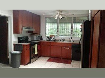 EasyRoommate US - 1 Bedroom available in spacious 3 bedroom house across from Kailua Beach, Kailua - $950 /mo