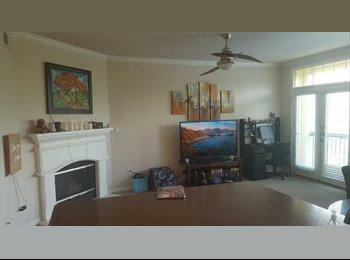 EasyRoommate US - Female Roomie SoCo, Austin - $970 /mo