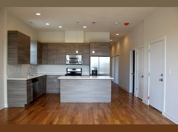 EasyRoommate US - Looking for a Roomate in Ukranian village! 3bed/ 2bath new condo! , Chicago - $950 /mo
