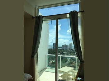 EasyRoommate US - Bright Room with nice roommate, Miami - $900 /mo