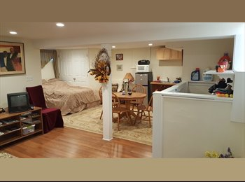EasyRoommate US - Great room for rent, Arlington - $1,100 /mo