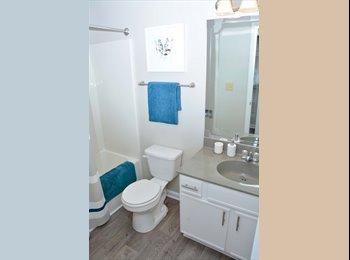 EasyRoommate US - 350$, great, quiet location, Greensboro - $350 /mo