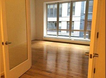 Seeking Professional Roommate to Share Luxury Loft Downtown