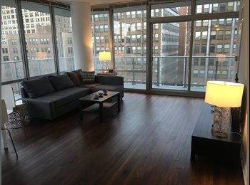 Luxury apartment in Printer'a Row (South Loop)