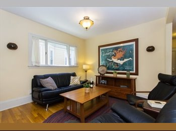 Extra BR in Spacious 3BR Apartment outside Davis Sq. and...