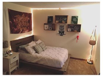 EasyRoommate US - Cute Spacious Apartment , East Glenville - $420 /mo