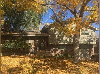 Two rooms plus private bath in Suburban Denver