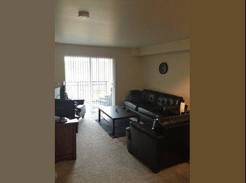 EasyRoommate US - Clean & low key, Bellevue - $900 /mo