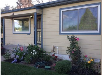 EasyRoommate US - Spare Bedroom in 980 sq ft house, utilities included., Denver - $800 /mo