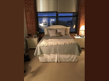 EasyRoommate US - Master bedroom and private bathroom for rent, Philadelphia - $760 /mo