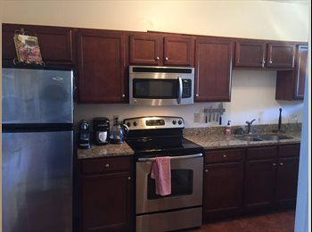 Room available in beautiful Monument Ave Apartment