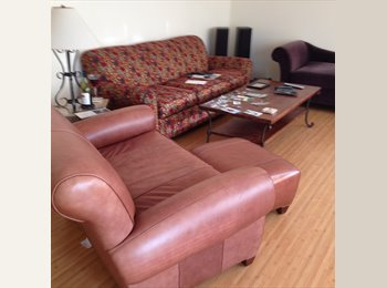 Gorgeous furnished 2bdr/1bath apt to share overlooking Alki...