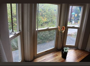 Adorable/Affordable Duplex - Capitol Hill - GREAT LOCATION