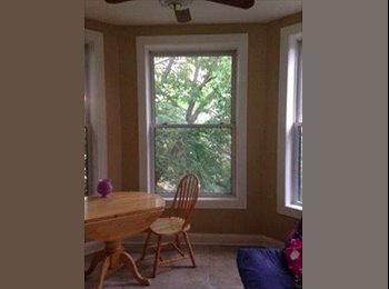 EasyRoommate US - Edgewater appartment- Near redline, , Chicago - $750 /mo