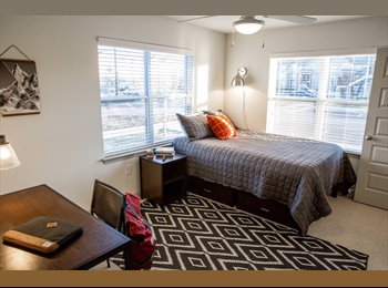 Room available in 2 bedroom apartment