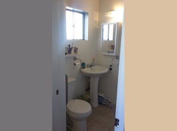 EasyRoommate US - Room for Rent Minutes from San Jose State University, San Jose - $700 /mo