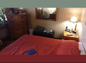 Furnished Bedroom for Male $875